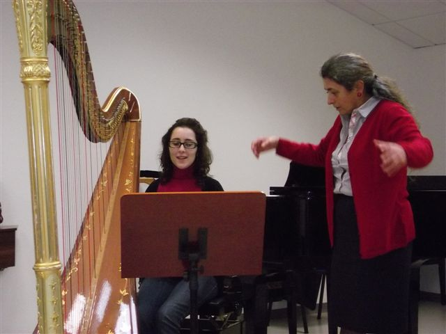 Harpist at the Havas New Approach workshop in Sassari